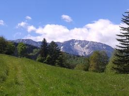 Umgebung Almboden, Puchberg am Schneeberg, Urlaub Niederösterreich